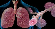 Obesity alters airway function, increases asthma